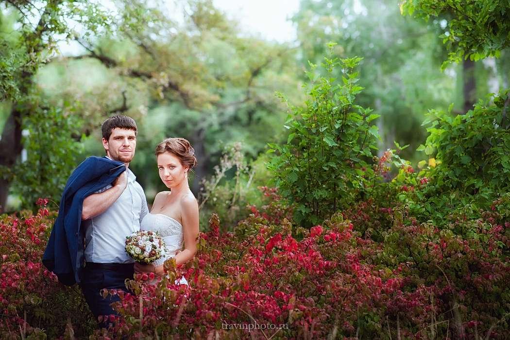 яркие краски леса в фотосессия на природе - фото 2830955 Фотограф Галина Травина