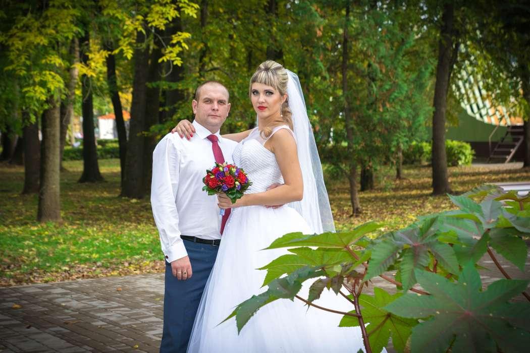 Фото 12814796 в коллекции Портфолио - Видеограф София Семиколенова