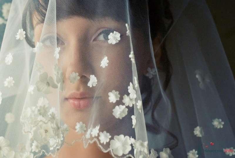 Фото 60123 в коллекции Невеста года - Thomas