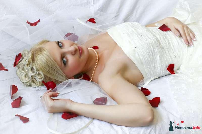 Фото 126629 в коллекции Мои фотографии - Lisa