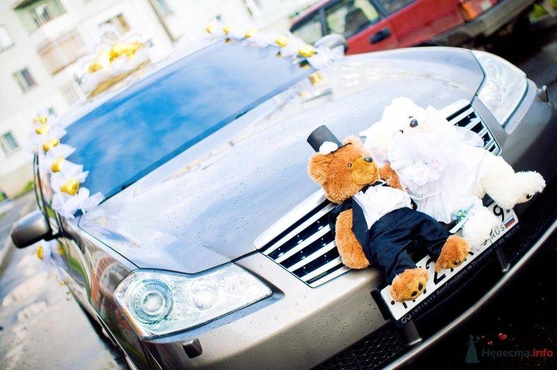 Пара милых медвежат в свадебных костюмах - украшение на решетку радиатора свадебного авто. - фото 59495 knopka_aa