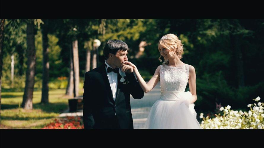 Фото 4256401 в коллекции Wedding - Видеограф Дима Белан