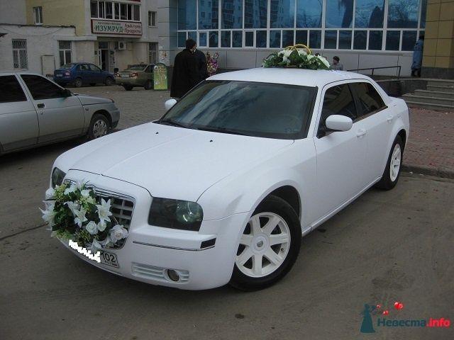 Белый матовый Chrysler 300C - фото 318574  Avtosvadba - аренда автомобиля с водителем