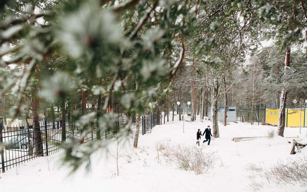 Фото 13980146 в коллекции Портфолио - Фотограф Вадим Вереницын