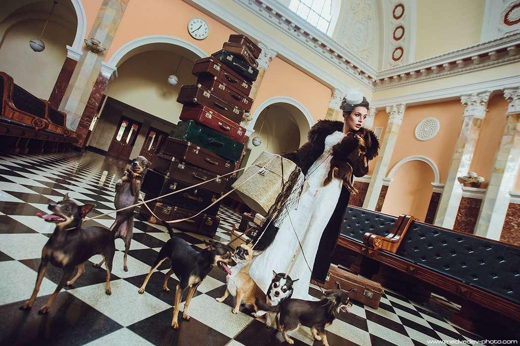 Оригинальная идея для фотосессии - фото 3931673 Свадебный организатор Елена Дармель