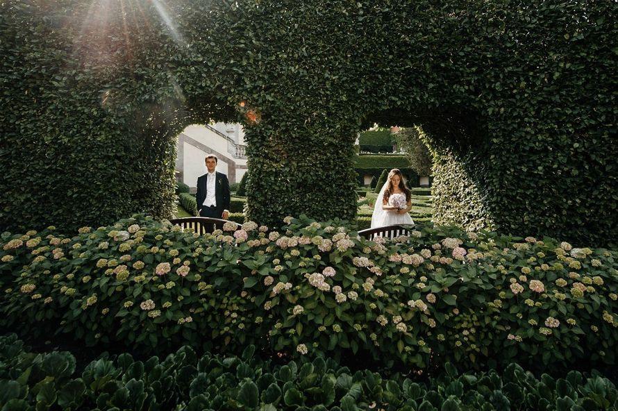 Свадьба в Праге - фото 10144412 Свадебный организатор Елена Дармель