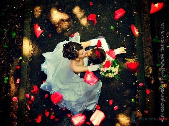 Свадебные фото - фото 24280 Невеста01