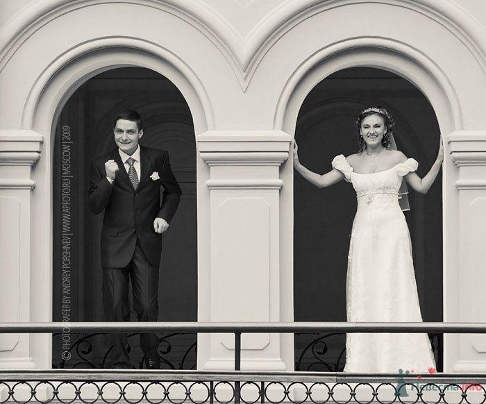 Фото 24288 в коллекции Свадебные фотографии