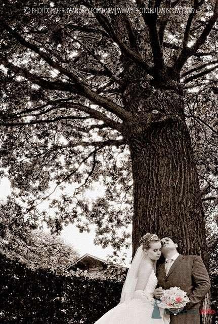 Фото 24291 в коллекции Свадебные фотографии - Невеста01