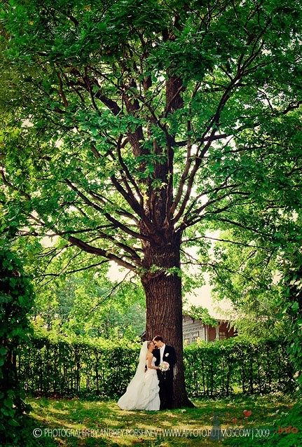 Фото 24297 в коллекции Свадебные фотографии - Невеста01