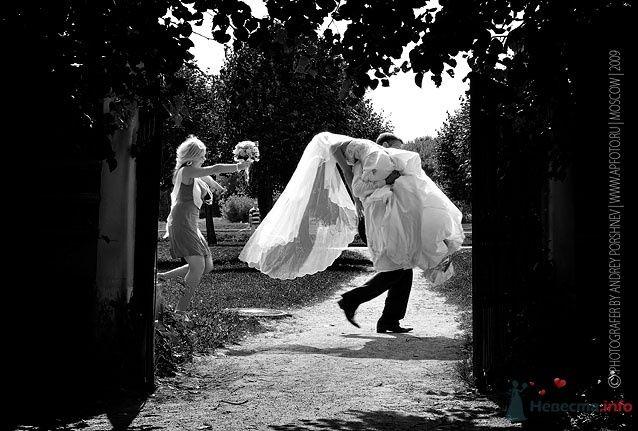 Фото 24308 в коллекции Свадебные фотографии