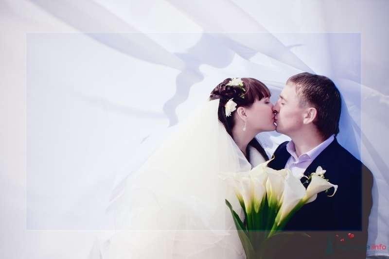 noname - фото 43608 Свадебный фотограф Пантелеев Александр