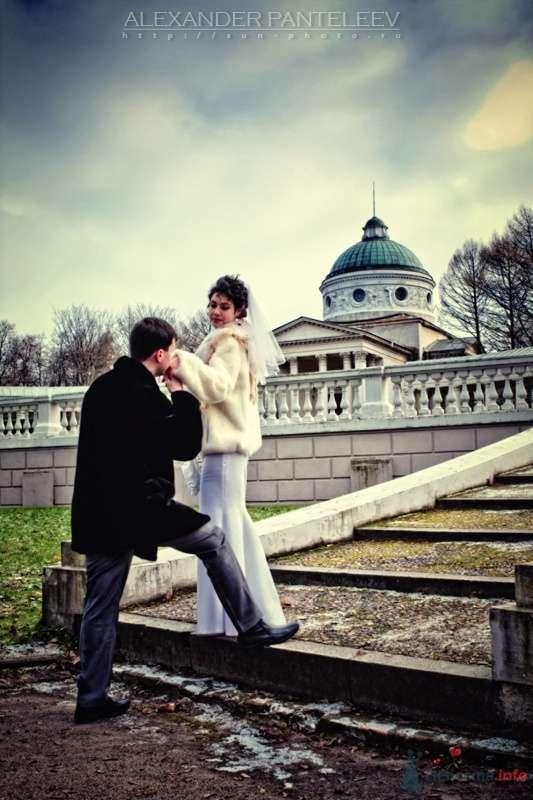 -*- - фото 50393 Свадебный фотограф Пантелеев Александр