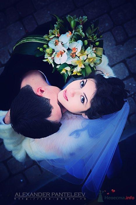 -*- - фото 51422 Свадебный фотограф Пантелеев Александр