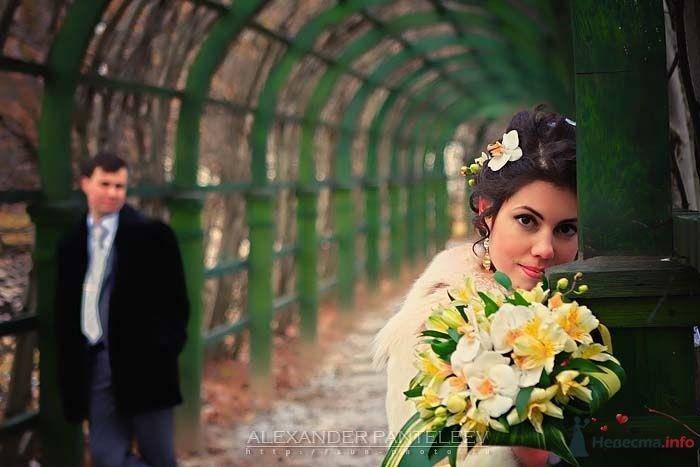 -*- - фото 52407 Свадебный фотограф Пантелеев Александр