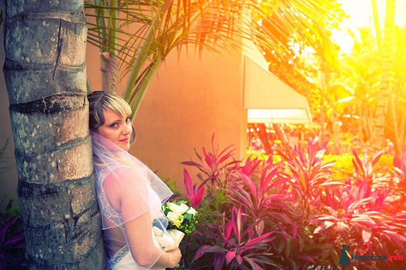 *-* - фото 104527 Свадебный фотограф Пантелеев Александр