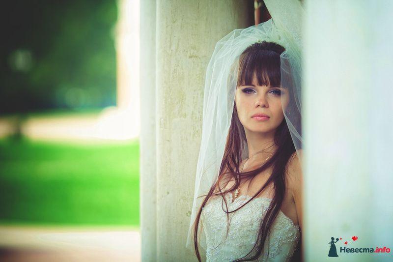 *** - фото 135728 Свадебный фотограф Пантелеев Александр