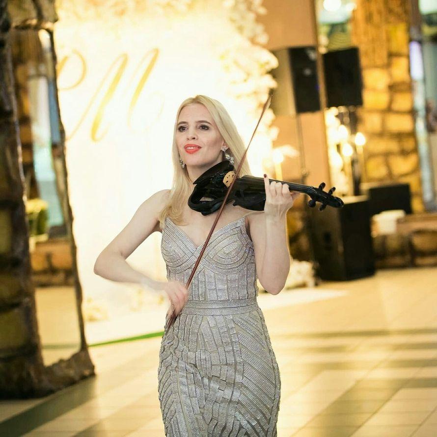 Выступление скрипачки на выездной церемонии, 30 - 40 мин.