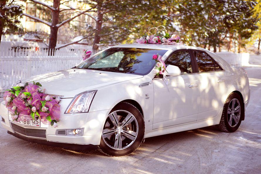 Фото 4115967 в коллекции свадебный автомобиль Cadillac CTS - Cadillac CTS - аренда авто на свадьбу