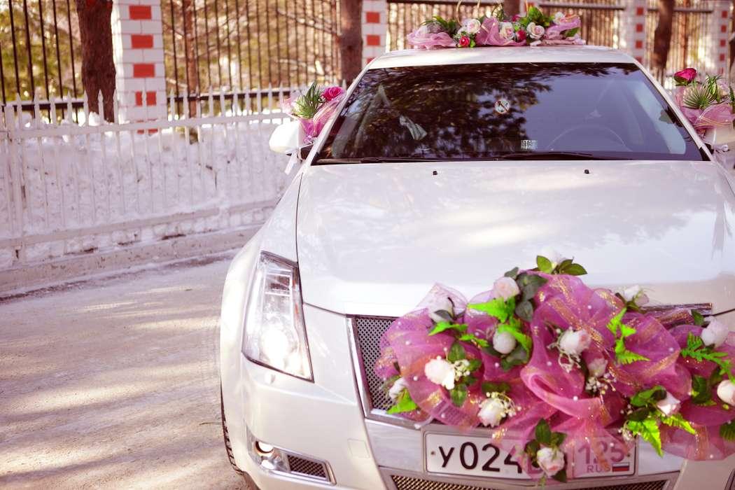Фото 4115973 в коллекции свадебный автомобиль Cadillac CTS - Cadillac CTS - аренда авто на свадьбу
