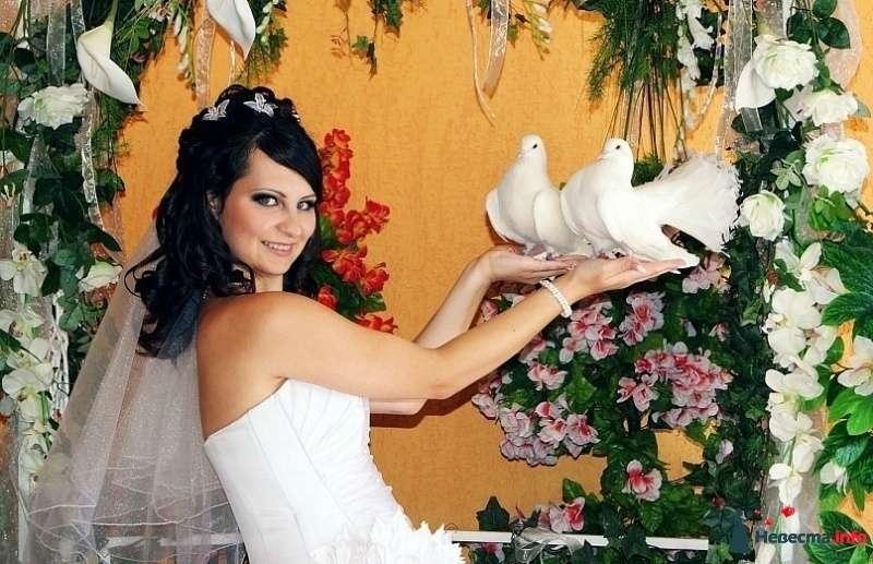 Фото 331257 в коллекции Свадебные прически - Стилист - визажист Ольга Жогина