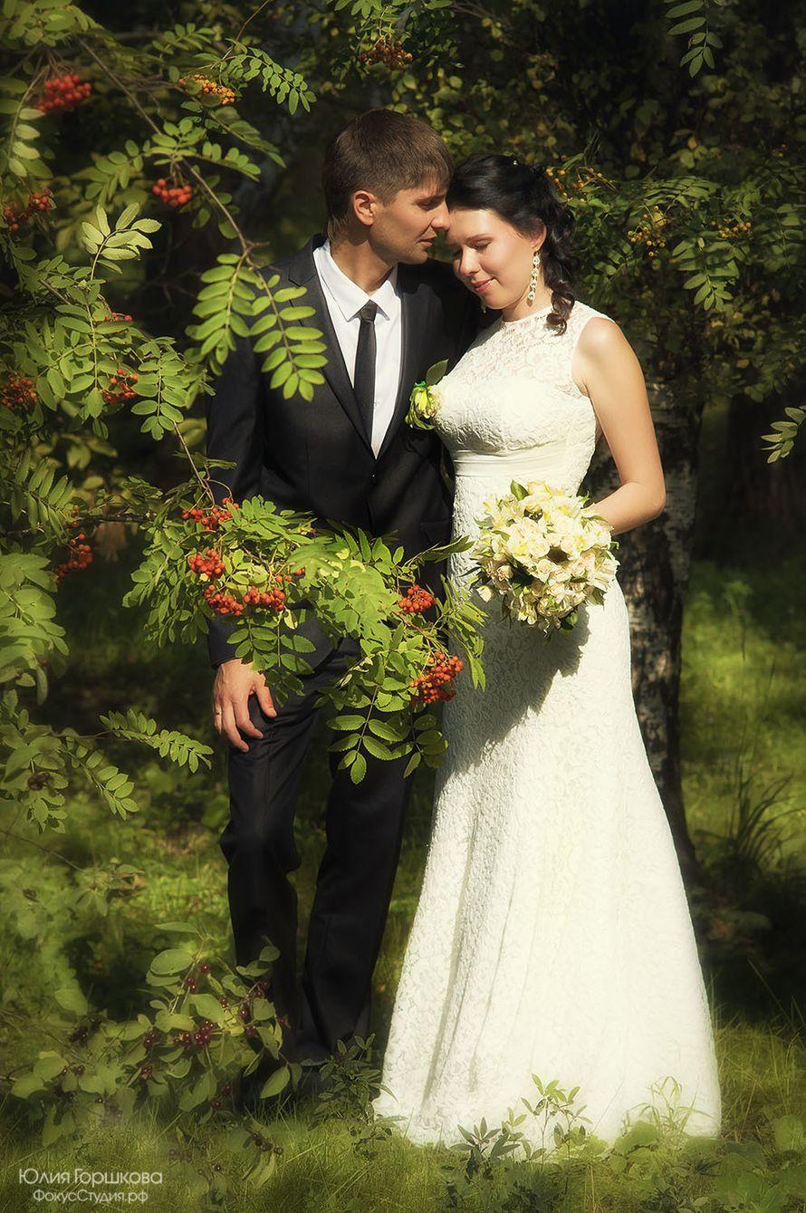 Фото 4486127 в коллекции Свадьба - Фотостудия Фокусстудия