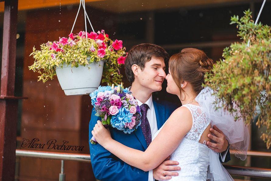 Свадебный и семейный фотограф Алена Бочарова 8960-142-01-48, календарь свободных дат  - фото 13067456 Фотограф Алена Бочарова