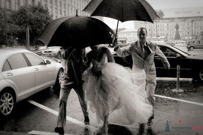 Фото 33105 в коллекции Свадебное... - Фотограф Снегирева Елена