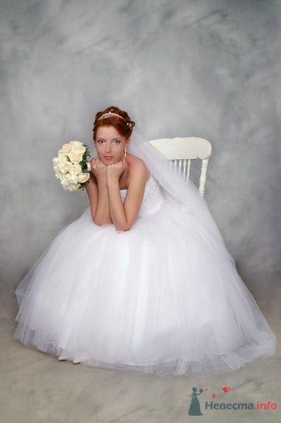 Фото 24379 в коллекции Свадебное фото (студия) - Матильда