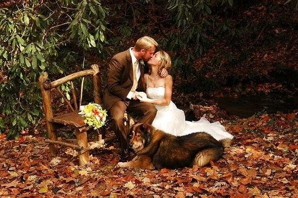 Фото 6851740 - Невеста01