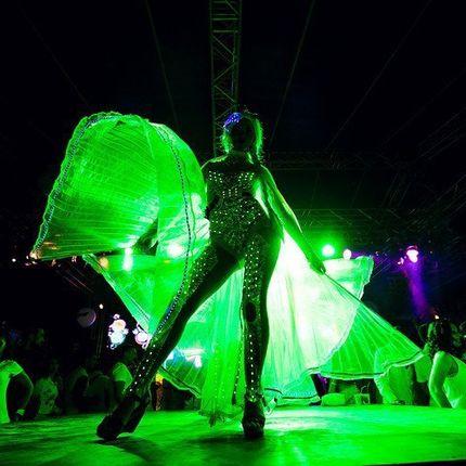 Светодиодное шоу (light show)