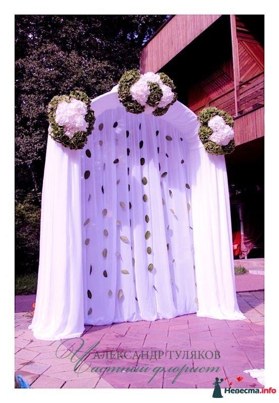 Свадебная арка с гортензией - фото 340071 Частный флорист Александр Туляков