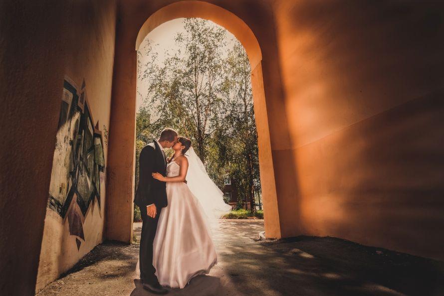 Фото 1222335 в коллекции Свадьбы 2013 - Фотограф Владимир Донченко