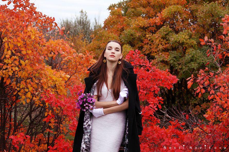 Яркая осень - фото 5055353 Фотограф Nessi Novaya