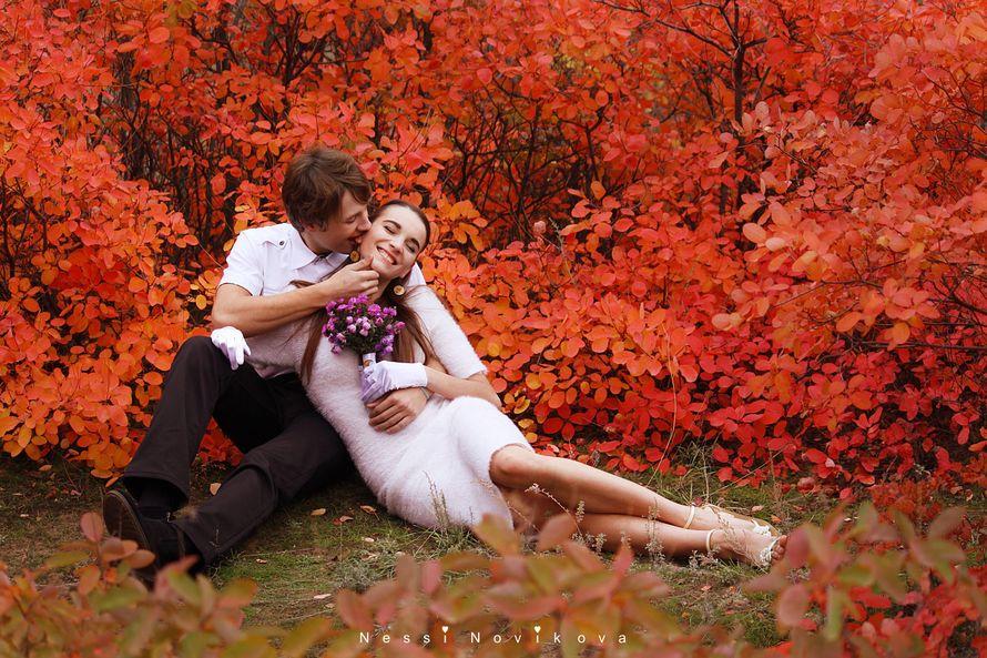 Фото 5055399 в коллекции Яркая осень - Фотограф Nessi Novaya