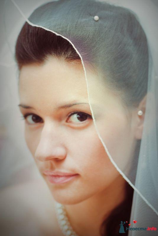Фото 86614 в коллекции My wedding  - Багирочка  Мэри