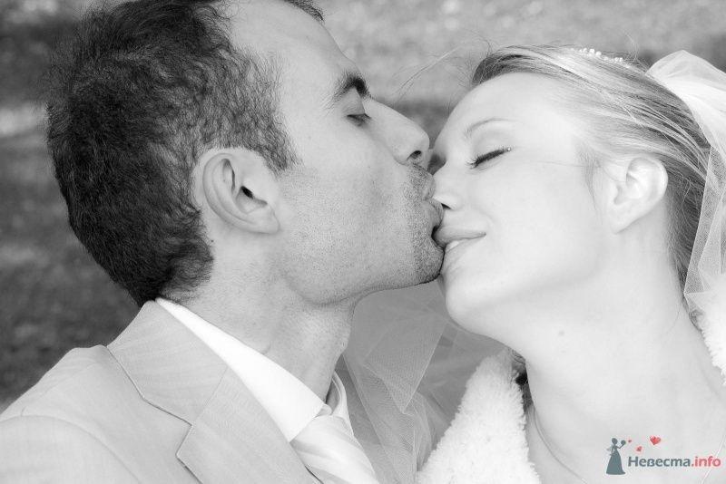 Фото 52212 в коллекции наша свадьба - женька87