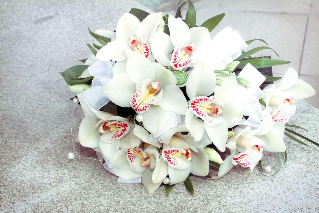 этой причине, букеты из орхидей необычные фото обладает умениями организатора