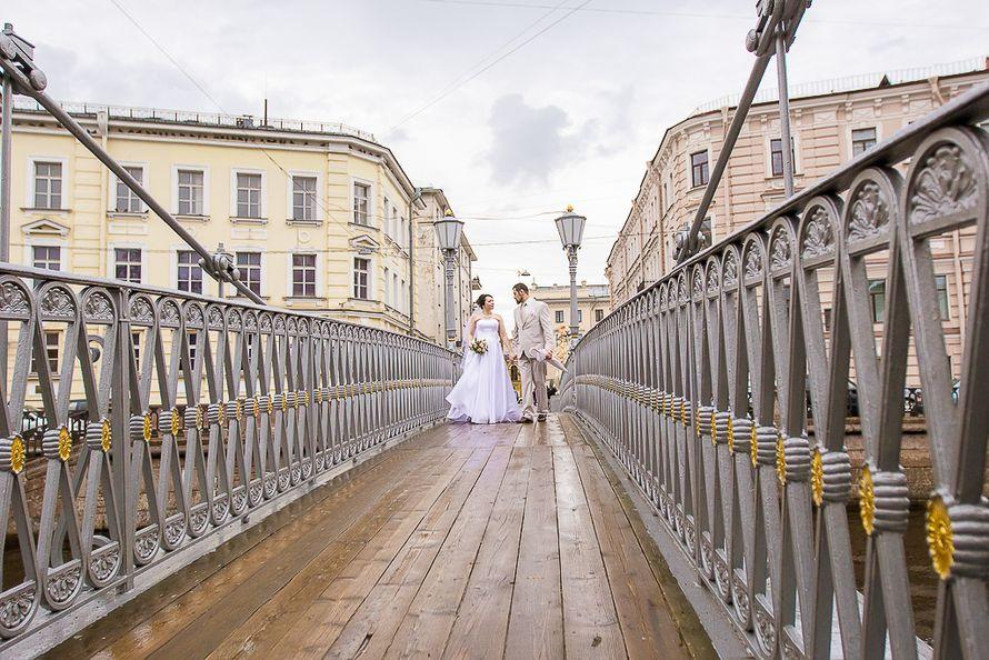 Фото 13854548 в коллекции Портфолио - Фотограф Оля Ветрова