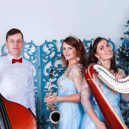 Выступление музыкантов - пакет Джазовое трио с арфой