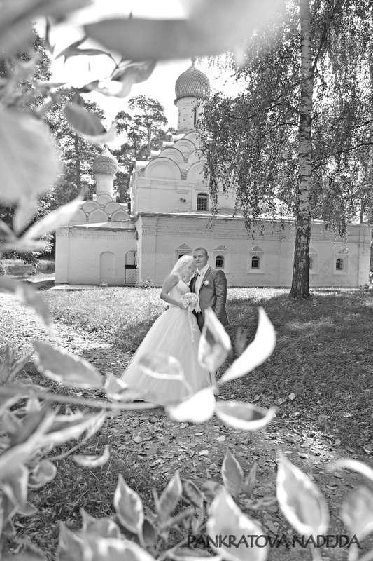 Фото 5314925 в коллекции портфолио - Видеографы Надежда и Сергей Панкратовы