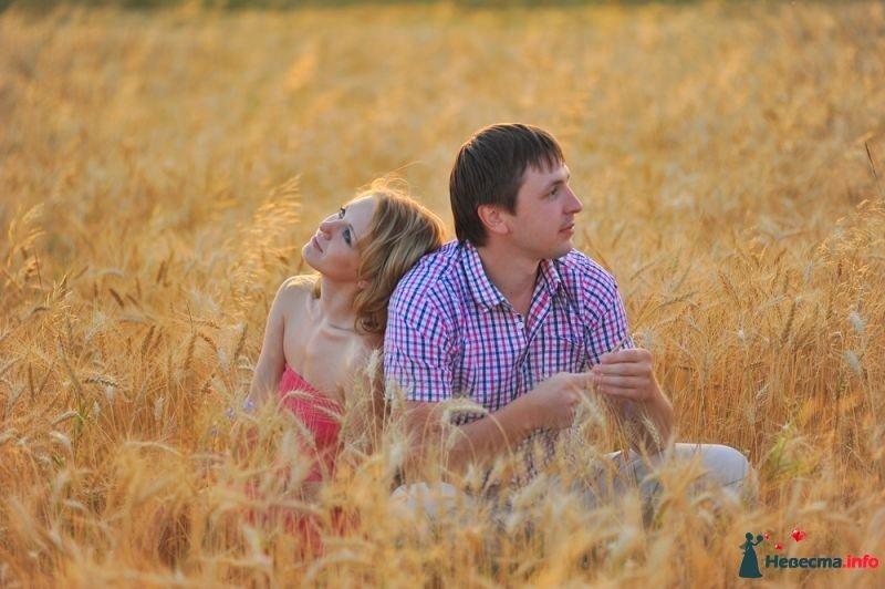 Фото 352958 в коллекции Мои фотографии - Свадебный фотограф Юлия Панфилова