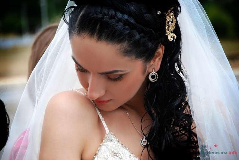 Фото 60494 в коллекции Мои фотографии - Liubitza