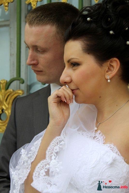 Фото 127910 в коллекции Елена и Александр - Фотограф Настя Лахина
