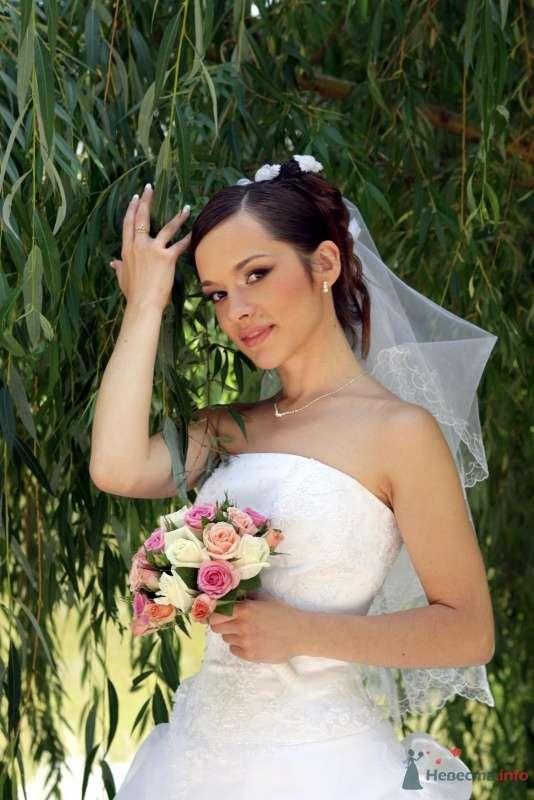 Фото 61992 в коллекции Анна и Олег - magnolia7