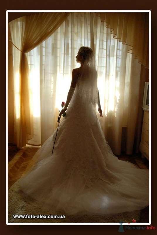 Фото 25726 в коллекции Свадебный фотограф-профессионал Александр Тужанский - fotoalex