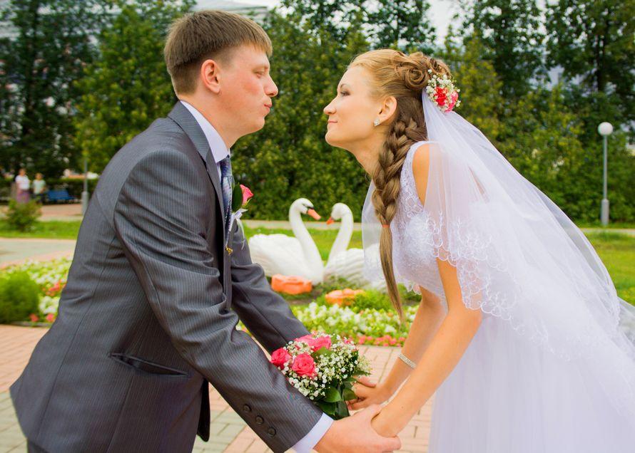Фото 5558634 в коллекции Свадьбы - Photo A