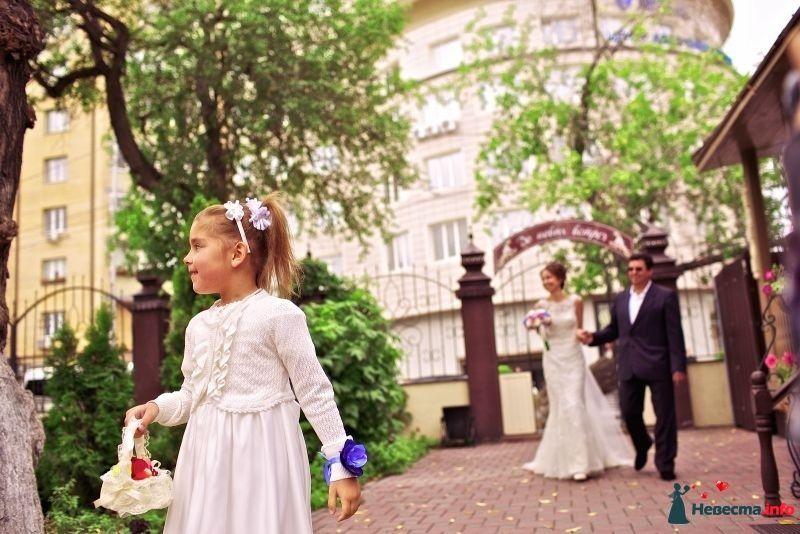 Фото 381946 в коллекции Свадебный альбом - Фотограф Сергей Семиков