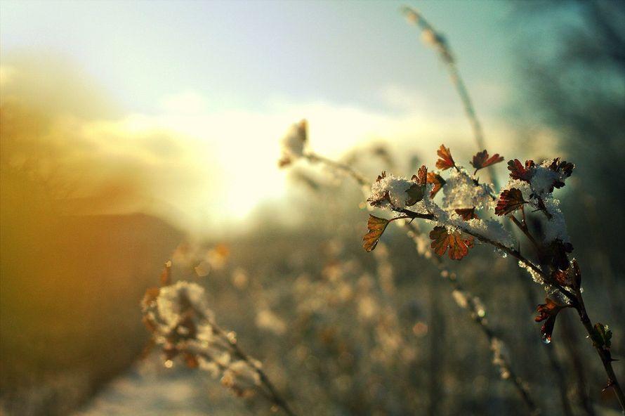 Фото 5702221 в коллекции пейзаж - Фотограф Кристина