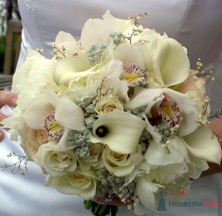Красивый белый букет невесты с орхидеями, каллами и розами - фото 1836 leshechka